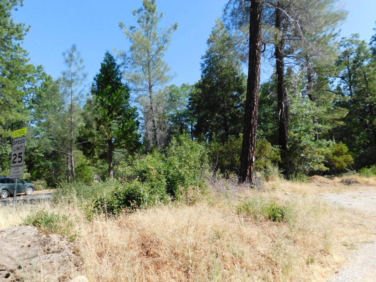 Lot #14 Ponderosa Way/100 Rd - Photo 1