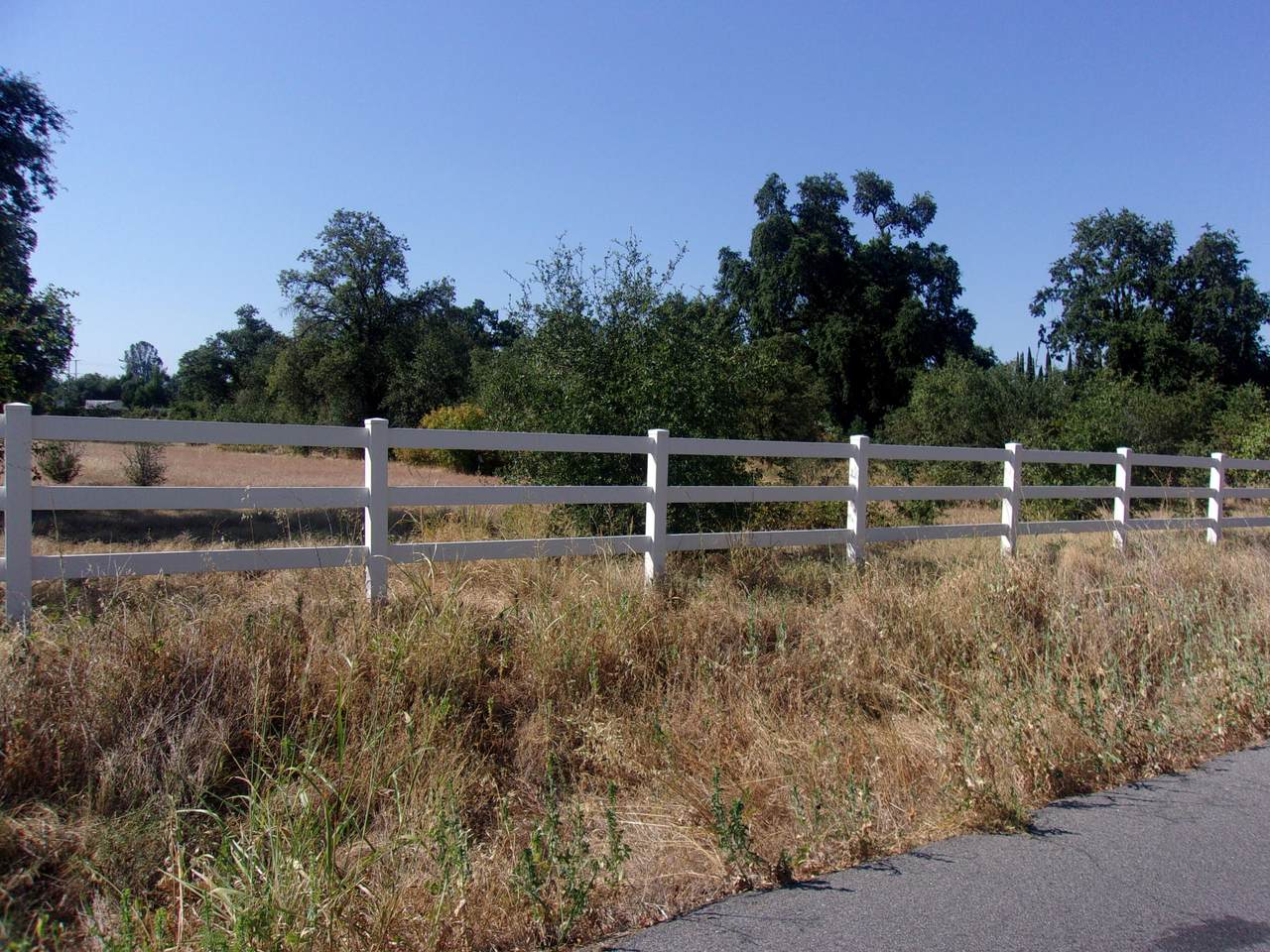 River Ranch Rd - Photo 1