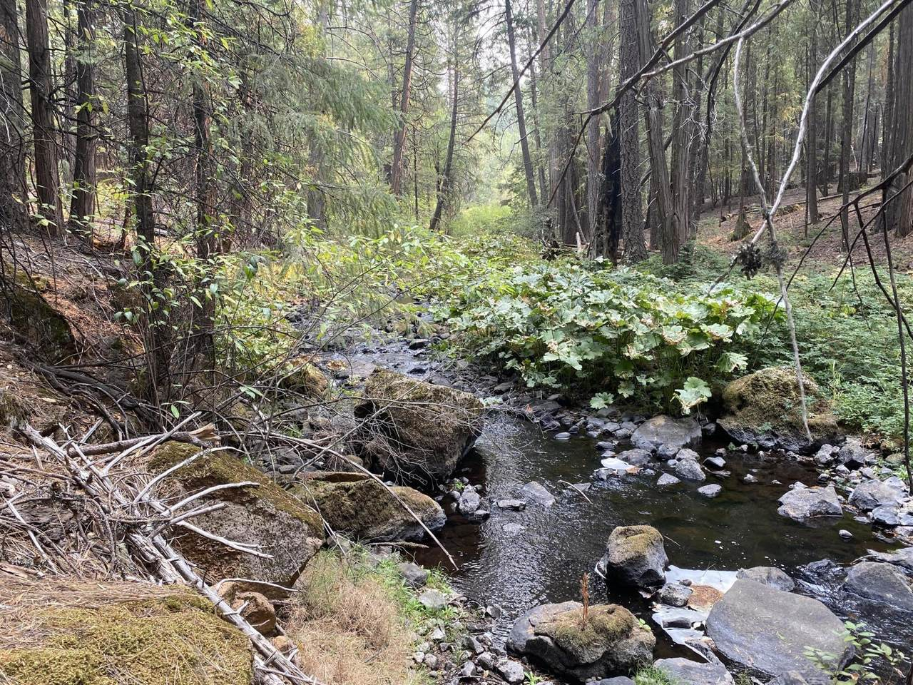Lot 51 Battle Creek Dr. - Photo 1