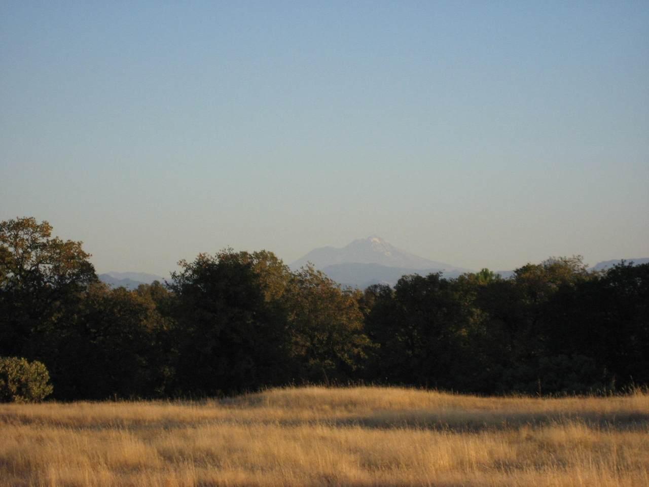 Quail Ridge - Photo 1