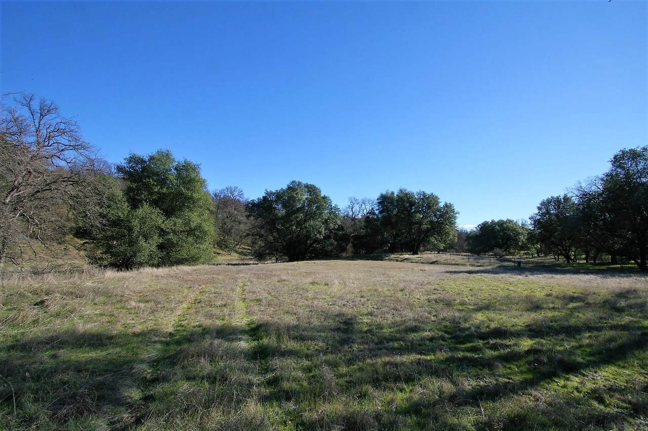 6.3 acres Oak Bottom Road - Photo 1