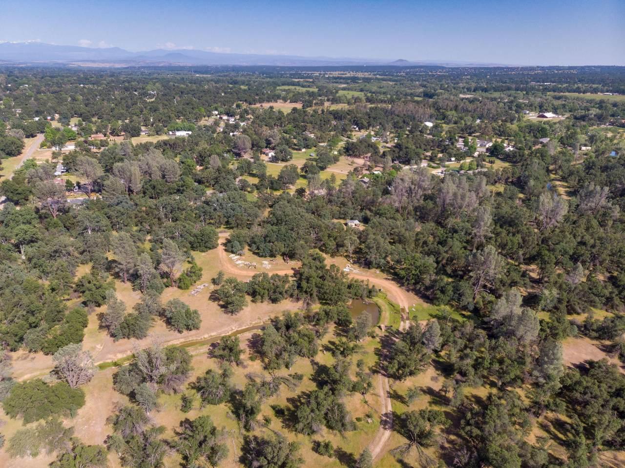 53 acres Wilderness Ln - Photo 1