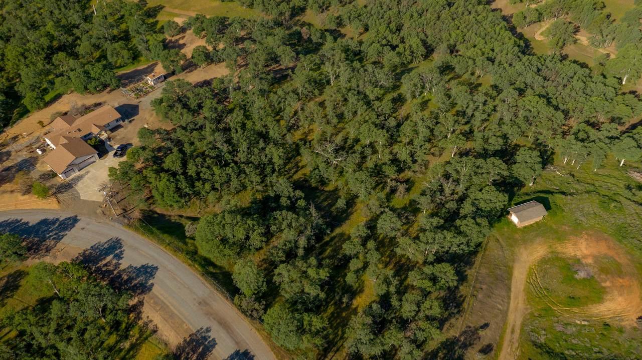 18623 Saddleback Ridge Loop - Photo 1