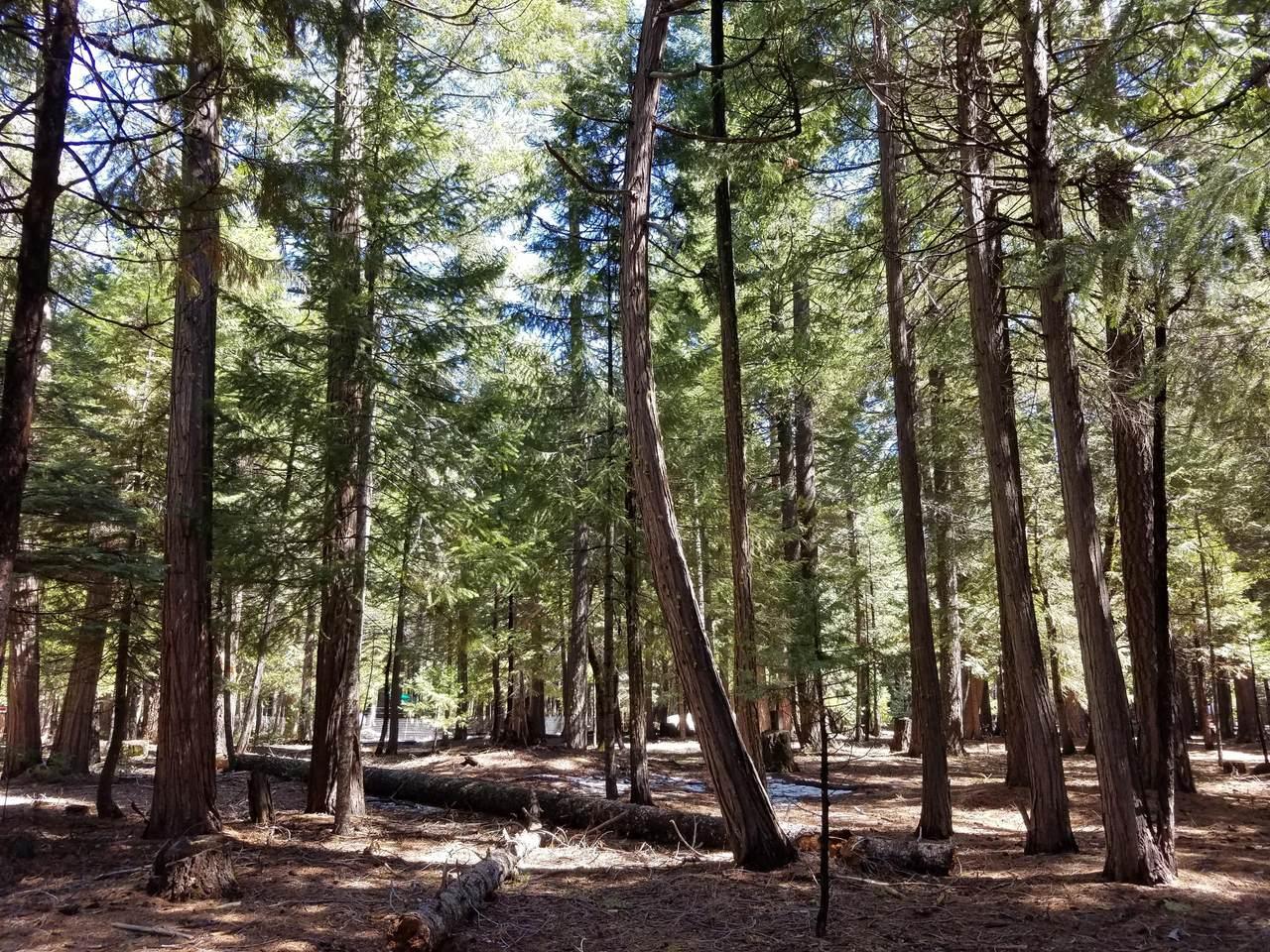 Lot 1 Redwood Drive - Photo 1