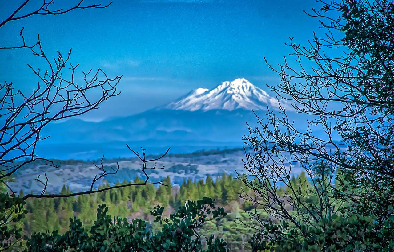 38 Lots Blue Ridge Mountain Estates - Photo 1