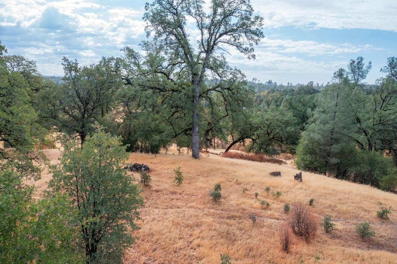 Oak Knolls - Photo 1