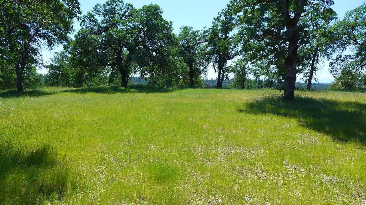 4573 Peaceful Ridge Rd - Photo 1