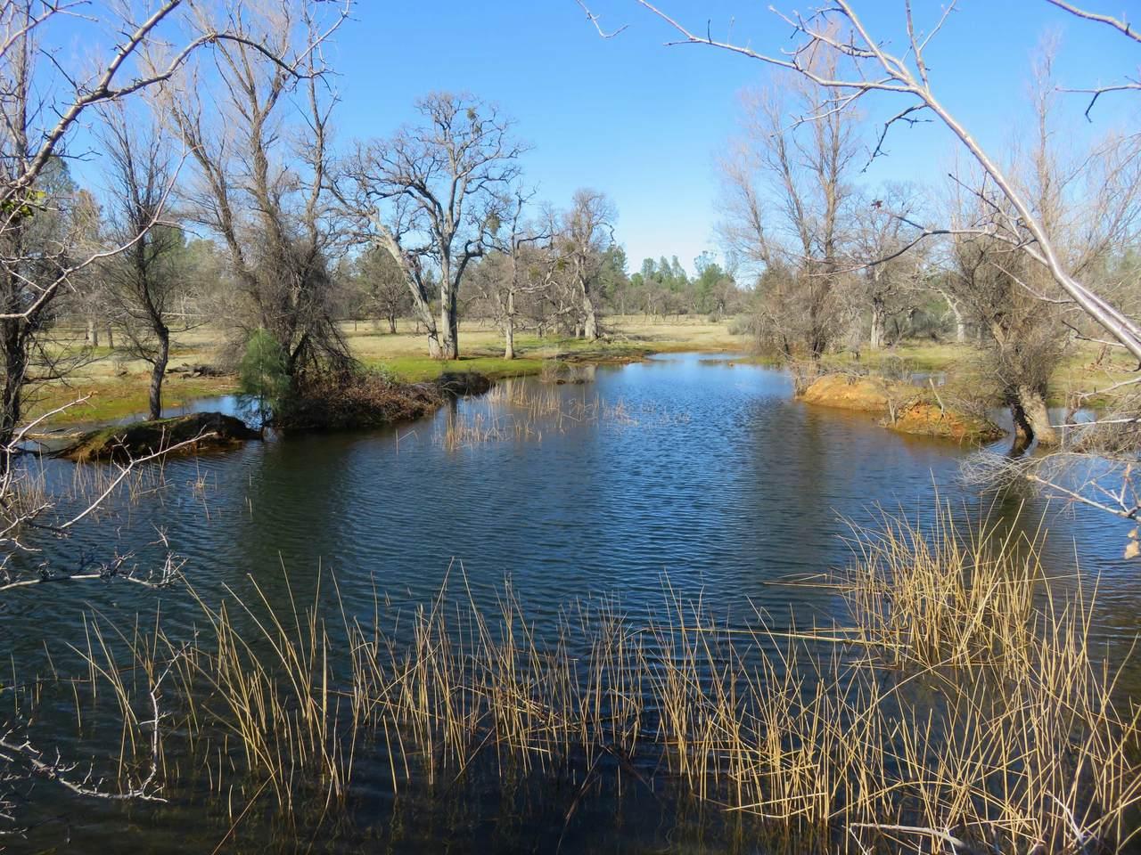 41acres Ash Creek Road - Photo 1