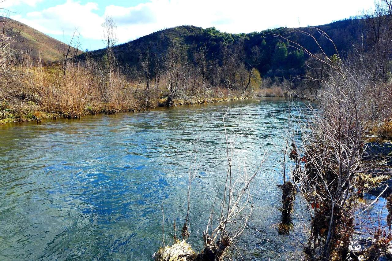13509 Trinity Mountain Rd - Photo 1