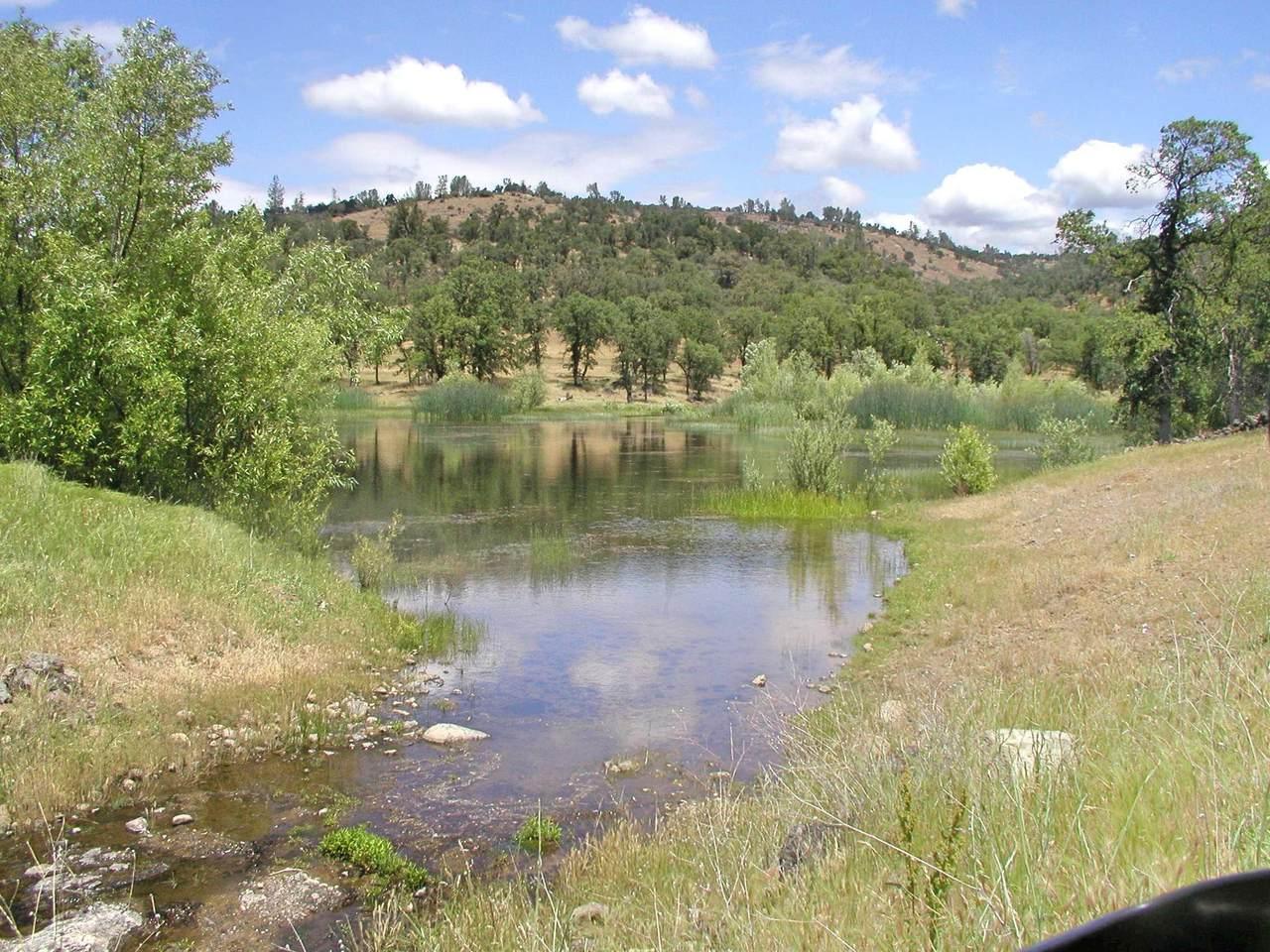 1864 acres Highway 36E - Photo 1