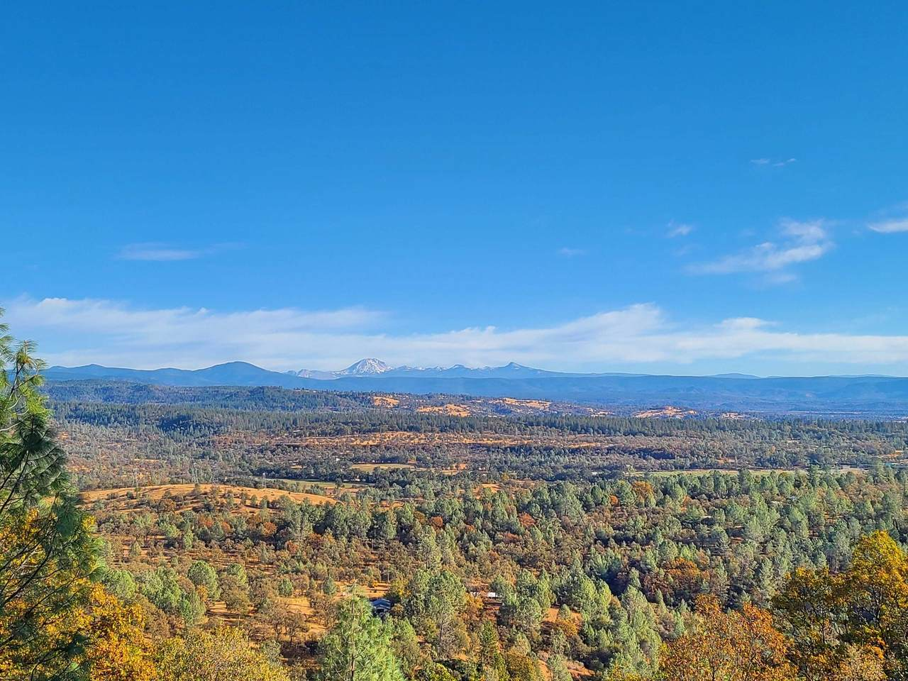 9.7 acres Lookout Mountain Road - Photo 1