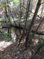 Benthill - Photo 4