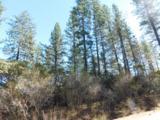 Lot #7 Black Butte Rd - Photo 1