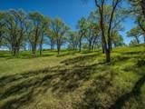Rolling Oaks Lot 33 - Photo 7