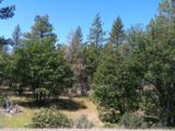 LOT 69 Shoshoni Loop - Photo 1