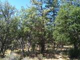 LOT 69 Shoshoni Loop - Photo 3