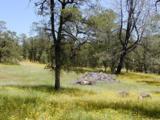 14010 Cub Trail - Photo 1