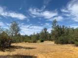 20708 Old Alturas Rd - Photo 11