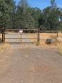 20708 Old Alturas Rd - Photo 5