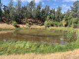 20708 Old Alturas Rd - Photo 9