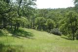 18663 Saddleback Ridge Loop - Photo 4