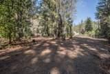 400 Ponderosa Pines - Photo 28