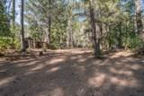 400 Ponderosa Pines - Photo 29
