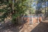 400 Ponderosa Pines - Photo 33