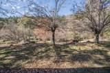 400 Ponderosa Pines - Photo 35