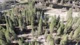 400 Ponderosa Pines - Photo 4