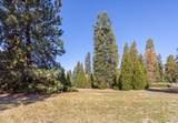 1420 Cedar View Ln - Photo 13