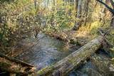 1420 Cedar View Ln - Photo 9