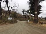 Cottonwood Creek Rd - Photo 2
