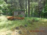 541 Vitzthum Gulch Rd - Photo 7