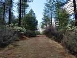 155 Acres Dickerson Rd - Photo 15