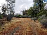 155 Acres Dickerson Rd - Photo 18