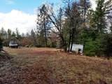 155 Acres Dickerson Rd - Photo 19