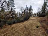 155 Acres Dickerson Rd - Photo 24