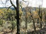 155 Acres Dickerson Rd - Photo 26