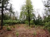 155 Acres Dickerson Rd - Photo 35
