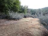 155 Acres Dickerson Rd - Photo 40