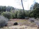 155 Acres Dickerson Rd - Photo 46