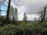 155 Acres Dickerson Rd - Photo 49