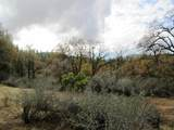 155 Acres Dickerson Rd - Photo 50