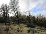 155 Acres Dickerson Rd - Photo 51