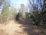 4.42 Acres Fawn Rd - Photo 10