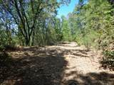 4.42 Acres Fawn Rd - Photo 4