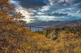 17590 Grey Fawn Trail - Photo 84