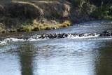 S Cow Creek Rd - Photo 19