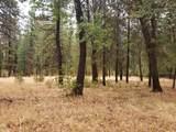 Pine Shadows Rd - Photo 1